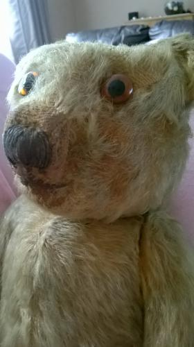 pre 1930 merrythought hygienic toys bear