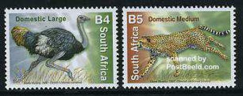 Definitives, animals 2v