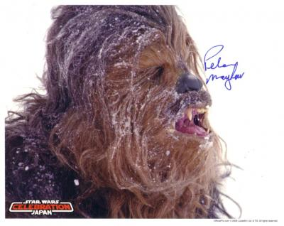 Peter Mayhew autographed Chewbacca 8x10 Star Wars photo