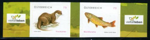 Fish & Otter 2v s-a