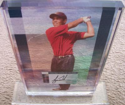 Tiger Woods autographed 2002 PGA Tour Player of the Year floating photo plaque UDA