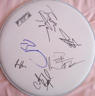 Dave Matthews Band autographed drumhead (all 5 including Leroi Moore)