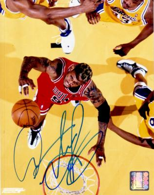 Dennis Rodman autographed Chicago Bulls 8x10 photo