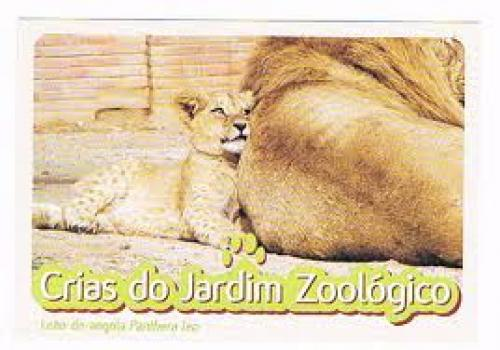 Postcard from Portugal - Lisbon Zoo
