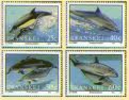 Dolphins Stamps  