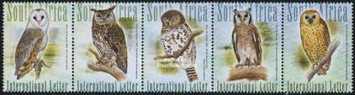 Owls 5v [::::]