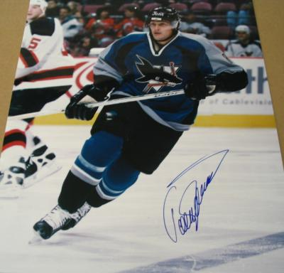 Teemu Selanne autographed 16x20 San Jose Sharks poster size photo