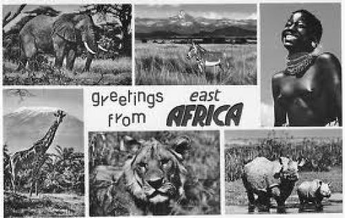 Postcard from East Africa