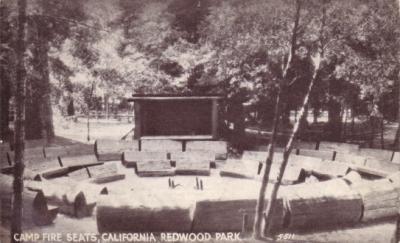 Redwood Park vintage early 1900s postcard