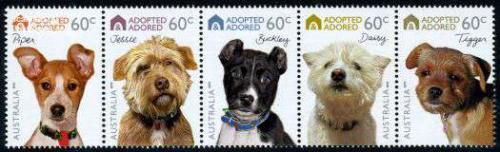 Dogs 5v [::::]