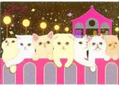 Thumbnail of Korea Jetoy Choo Choo Cat Postcard