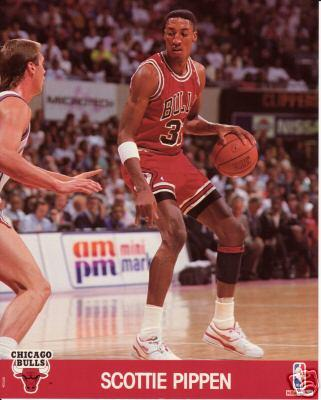 Scottie Pippen Bulls NBA Hoops 8x10 photo