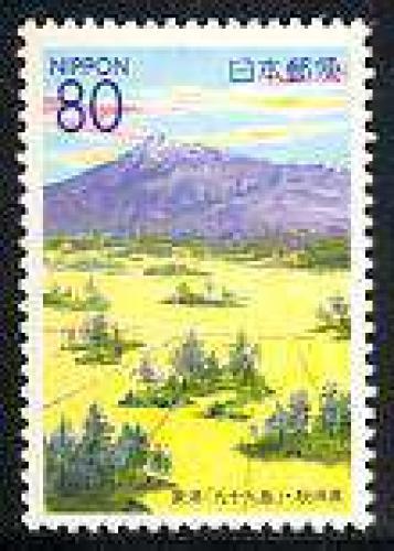 Akita 1v