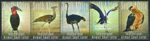 Large birds 5v [::::]