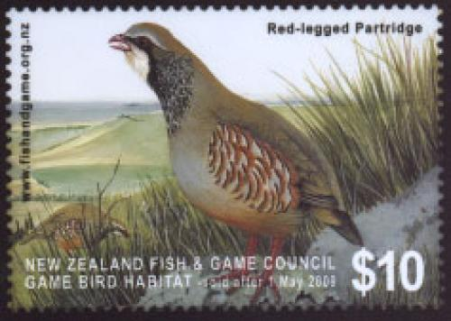 Red legged Partridge 1v