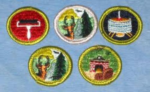 Boys Scout Badges; Memorabilia