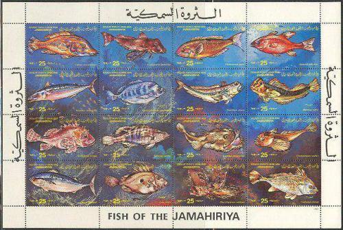 Fish 16v m/s; Year: 1983