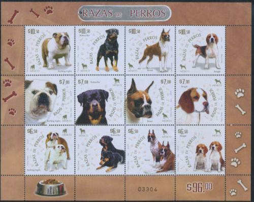 Dogs 12v m/s