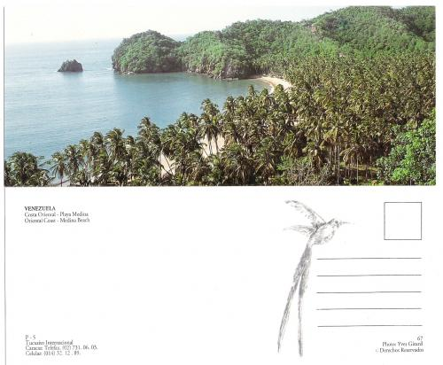 PANORAMIC POSTCARD   ORIENTAL COAST MEDINA BEACH  VENEZUELA