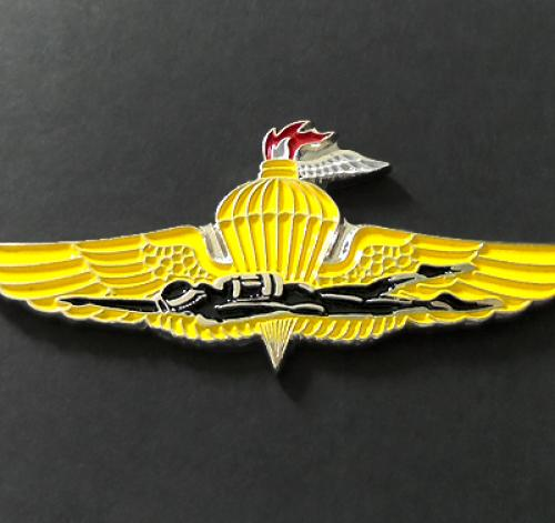 US Marines FORCE RECON, RECON MARINE insignia Metal badge pin